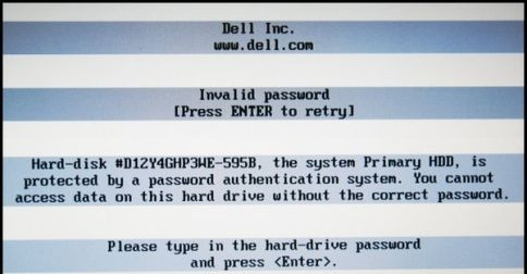 Dell 595B Bios Password